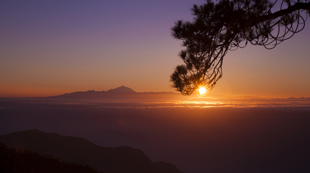 Gran Canaria, sunset over Teide on Tenerife as seen from pine forest Pinar de Tamadaba
