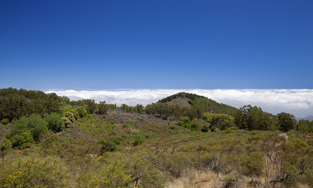 enviroment: Gran Canaria,  July, central areas  landscape
