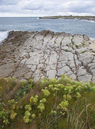 coast of Cantabria, zone of Playa de Maruca, three kilometres away from Santander