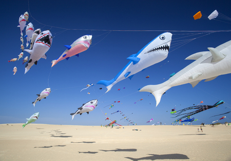 FUERTEVENTURA, SPAIN - NOVEMBER 11: Viewers watch from the ground as  kites fill the sky at 30th International Kite Festival, November 11, 2017 in Nature park Dunes of Corralejo, Fuerteventura, Spain Editorial