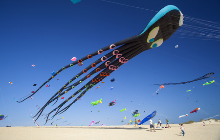 FUERTEVENTURA, SPAIN - NOVEMBER 11: Viewers watch from the ground as kites fill the sky at 30th International Kite Festival, November 11, 2017 in Nature park Dunes of Corralejo, Fuerteventura, Spain