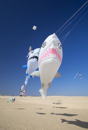 FUERTEVENTURA, SPAIN - NOVEMBER 11: Viewers watch from the ground as  kites fill the sky at 30th International Kite Festival, November 11, 2017 in Nature park Dunes of Corralejo, Fuerteventura, Spain Editorial