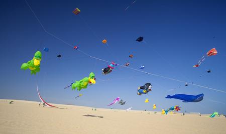 フエルテベンチュラ、スペイン - 11月11日:視聴者はカラフルな凧が第30回国際凧祭りで空を埋めるので、地面から見ます, 11月 11, 2017 コラレホの自然 報道画像