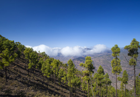Gran Canaria, November, approaches of Tauro mountain range in the south of the  island Banco de Imagens