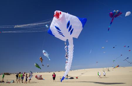 凧は 2017 年 11 月 11 日自然公園コラレホ砂丘、フェルテベントゥラ島、スペインの 30 の国際凧祭りで空を埋めるように、視聴者が地面から見るフェ 報道画像