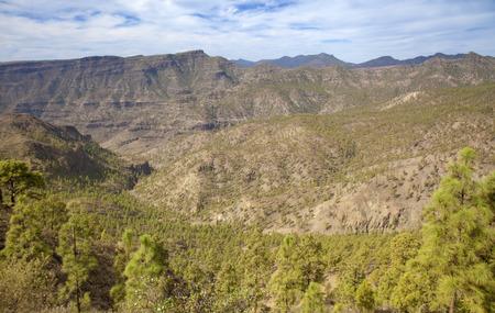 Inland Gran Canaria, Nature reserve Pilancones, sunny day in December Stock Photo