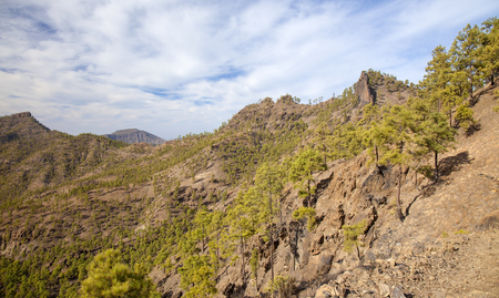 Inland Gran Canaria, Nature reserve Pajonales, sunny day in December