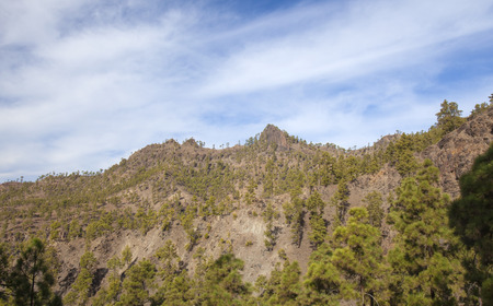 Inland Gran Canaria, Nature reserve Pilancones, sunny day in December Stock Photo