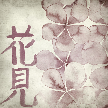 textured old paper background with japanese callygraphy Hanami - flower viewing, and watercolor spring flowers