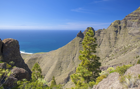 Gran Canaria, March - view from a hiking path in Tamadaba Nature reserve towards Faneque, the tallest cliff in Europe, on the right