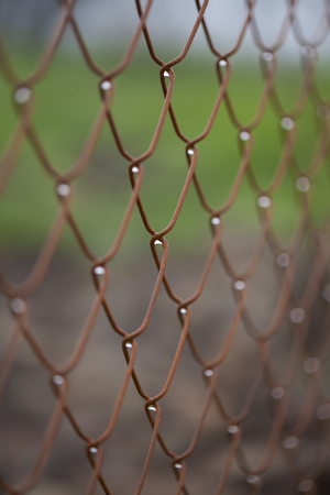 wet wire net fence, macro shot with selective focus