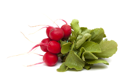 bunch of red radish isolated on white background 版權商用圖片