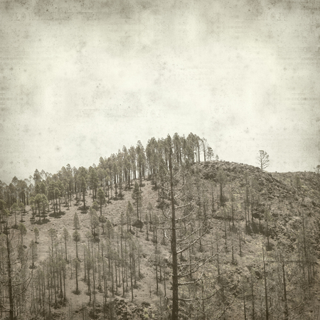 textured old paper background with  Gran Canaria landscape 版權商用圖片