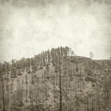 textured old paper background with  Gran Canaria landscape Foto de archivo