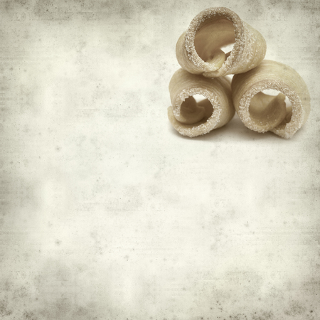 textured old paper background with winter puff pastries of Reinosa, Cantabria, Spain Reklamní fotografie