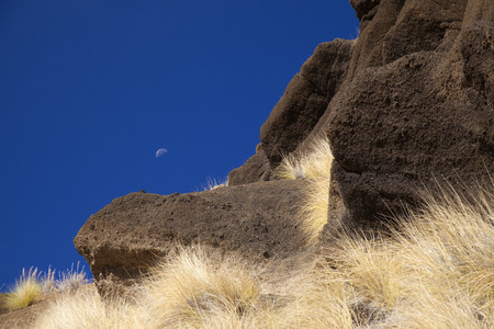 Gran Canaria, October, landscapes of valley of Agaete, dark rock and fountain grass Reklamní fotografie