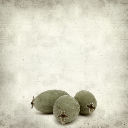 textured old paper background with green feijoa fruit 版權商用圖片