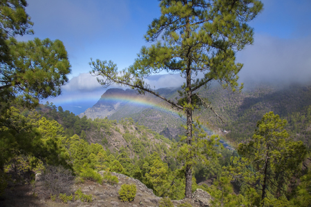 Gran Canaria,  nature park pine forest Tamadaba, view down a valley, little rainbow in water suspension