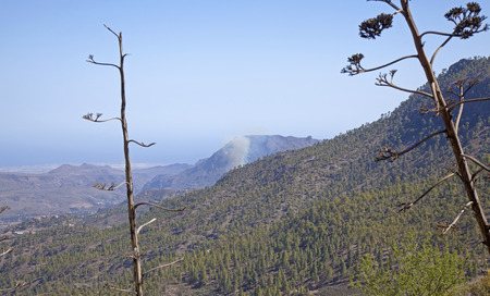 Gran Canaria, smoke from fire in Fataga zone which started in a palm grove next to a hotel, as seen from a hiking path Cruz Grande - San Bartolome de Tirajana, 16 March 2019