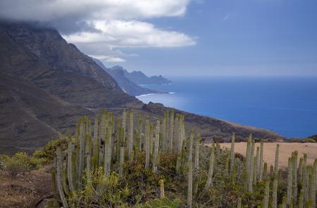 Gran Canaria, marzo, paisajes del municipio de Agaete, ruta de senderismo San Pedro - Puerto de las Nieves, vista hacia Faneque, acantilado más alto de Europa sobre el nivel del mar, y sinuosa y peligrosa carretera Agaete - La Aldea de San Nicolas Foto de archivo