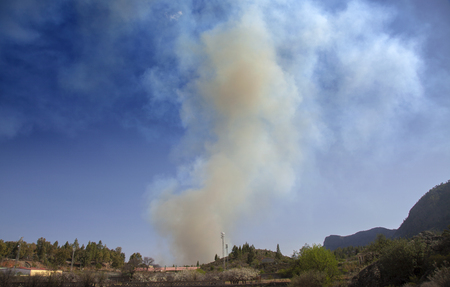 Gran Canaria, smoke from fire in Fataga zone which started in a palm grove next to a hotel, as seen from San Bartolome de Tirajana, 16 March 2019