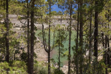 Gran Canaria, June, nature park Tamadaba, freshwater reservoir La Hoya Stock Photo