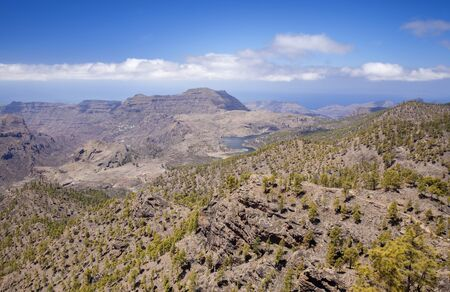 Gran Canaria, June, Nature Park Pajonales, reforested areas, view towards freshwater reservoir Presa de Las Ninas