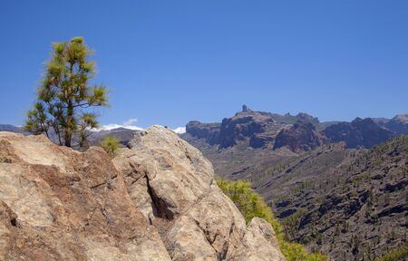 Gran Canaria, June, view from a peak Morro de Pajonales towards the center of the island, iconic Roque Nublo visible, Nature Park Pajonales