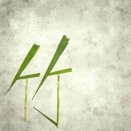 textured stylish old paper background, square, with Chinese character zhu, bamboo, made of stems and leaves
