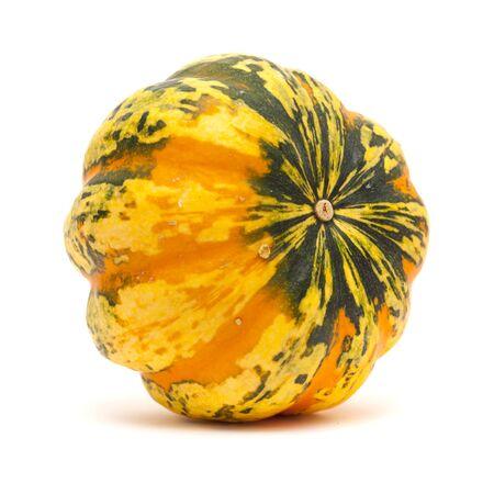 ornamental orange and dark green pumpkin isolated on white