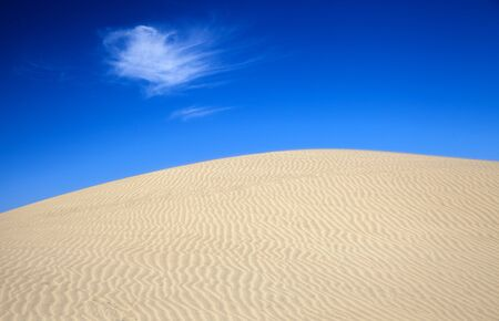 sand and wind pattern on dunes, Gran Canaria, Canary Islands, Spain 스톡 콘텐츠