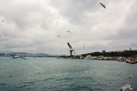 ISTANBUL, TURKEY - MAY 01, 2016: Seagulls flaying on the Istanbul background,The Bosporus is a narrow, natural strait and an internationally significant waterway located in northwestern Turkey. Stock Photo