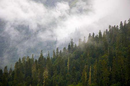 Wonderful and amazing landscape, foggy and misty mountain view in Svaneti, Georgia. Summer in Georgia. Standard-Bild