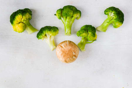 Raw broccoli and mushroom vegetables on the white background, high angle view