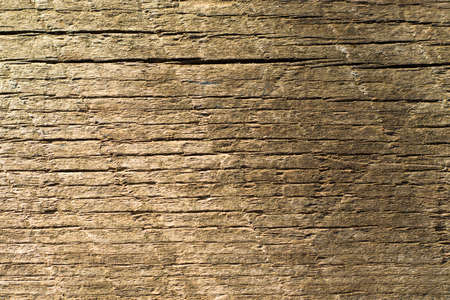 Wooden background, Cut tree pattern. Texture of cut and dry tree. Tree age rings. Cracks on the wooden background. Tbilisi, Georgia. 写真素材