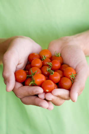 Tomatoes in hands photo