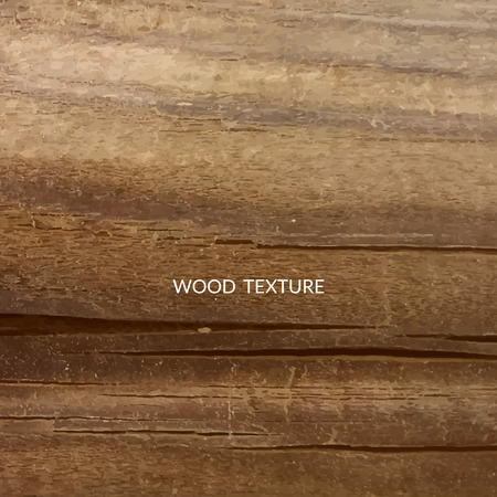WOOD BACKGROUND: Wood texture background