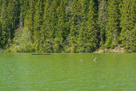 peacefull: Lacul Rosu - Red Lake, Eastern Carpathians, Romania.