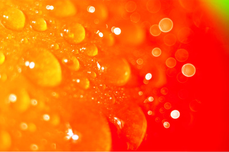 tomato red water glare health fresh tomato light background