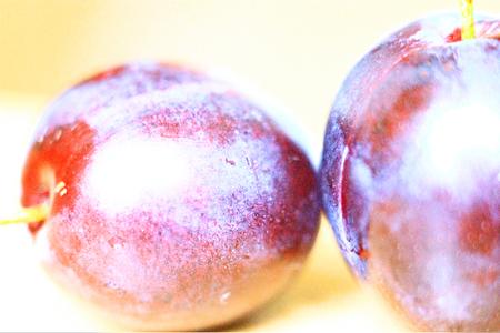 Plum Berry Fruit Vinous Burgundy Red Ruddy Gules water glare health fresh light background