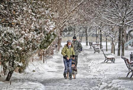 snowfalls: Snowfall Stock Photo
