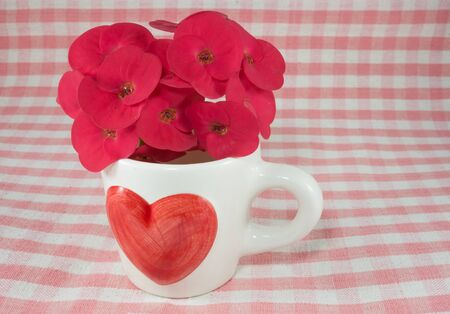 coffee cup in love theme photo