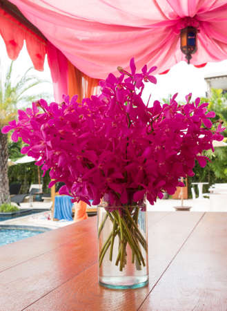 Pink flowers in vase put on the table