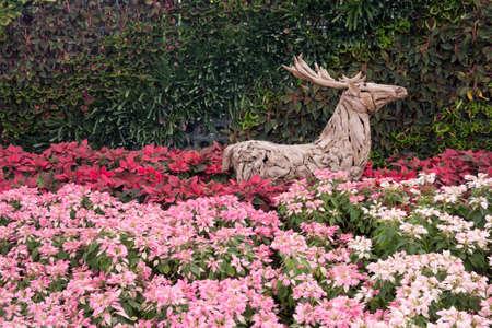 outdoor gardening with wooden dear
