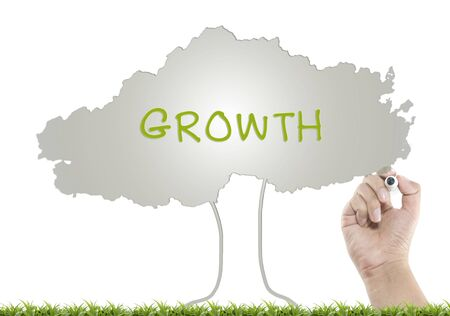 Growth concept with drawing tree Stock Photo
