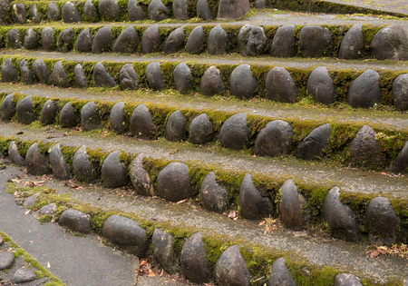 Old stone staircase steps, overgrown with moss and weeds