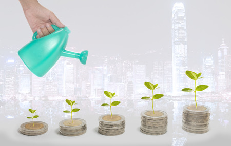 Investment growth concept with coins and plant in background of cityscape Stock Photo