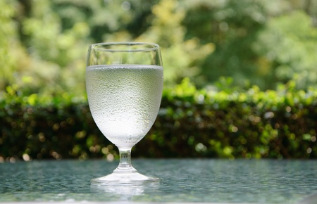 A glass of pure water in the garden photo