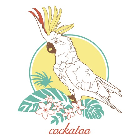 cockatoo: illustration for printing on paper and fabric