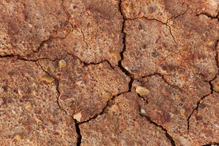 Close up of dry cracked clay soil with tiny pebbles of various color embedded in it. photo